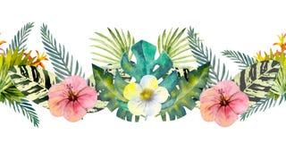 Тропические листья Повторение границы лета горизонтальной r Составы акварели для дизайна  стоковые изображения rf