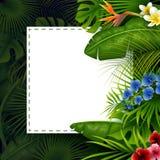 Тропические листья с белой бумагой рамки для текста на темной предпосылке иллюстрация штока