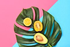 Тропические лист ладони, плодоовощи Яркий комплект лета vegan Стоковые Фото