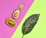 Тропические лист ладони, плодоовощи Яркий комплект лета vegan Стоковые Изображения RF