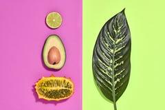 Тропические лист ладони, плодоовощи Яркий комплект лета vegan Стоковое Фото