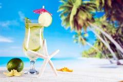 Тропические пить на пляже стоковое изображение rf
