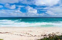 Тропические пляж и море стоковые фото