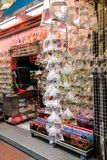 Тропические рыбы аквариума и plat на рынке рыбки Гонконга Стоковое Изображение