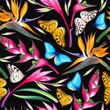 Тропические цветки безшовные иллюстрация вектора