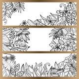 Тропические цветки глумятся вверх по комплекту знамени Стоковое Изображение
