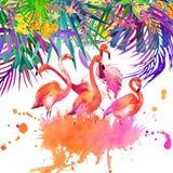 Тропические цветки, листья и птица иллюстрация вектора