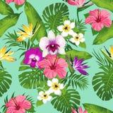Тропические цветки и листья на голубой предпосылке безшовно вектор Стоковое Изображение RF