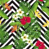 Тропические цветки и листья на предпосылке безшовно вектор Бесплатная Иллюстрация