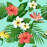 Тропические цветки и листья на предпосылке безшовно вектор иллюстрация вектора