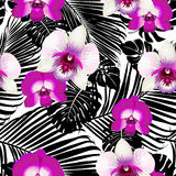 Тропические цветки и листья на предпосылке Стоковые Изображения RF
