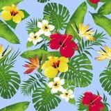 Тропические цветки и листья на предпосылке Стоковая Фотография RF