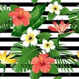 Тропические цветки и листья на предпосылке Иллюстрация вектора