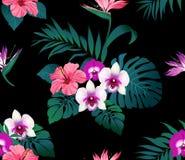 Тропические цветки и листья на черной предпосылке Стоковое Изображение RF