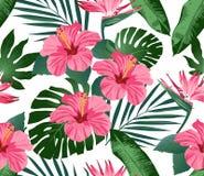 Тропические цветки и листья на предпосылке безшовно Мода печати вектор иллюстрация штока