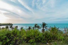 Тропический ландшафт на скале пляжа Balangan, Бали, Индонезии, Азии Солнечный день, красивое голубое небо, зеленые ладони Стоковые Изображения RF