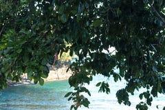 Тропический ландшафт острова, Бали, Индонезия день солнечный Стоковые Фото