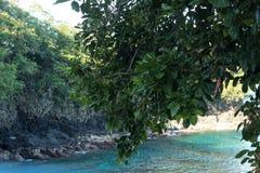 Тропический ландшафт острова, Бали, Индонезия день солнечный Стоковое Фото