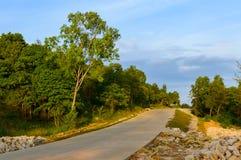 Тропический ландшафт с пустой дорогой и зеленой обочиной Стоковое фото RF