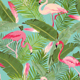 Тропический безшовный фламинго и флористическая картина лета Для обоев, предпосылки, текстуры, ткань, карточки иллюстрация вектора