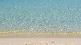 Тропический взгляд берега моря видеоматериал