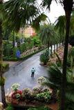 Тропический вид на сад Стоковые Фотографии RF