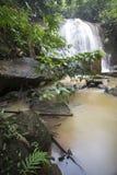 Тропический водопад в глубоком лесе стоковые фотографии rf