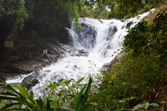 Тропический водопад в лесе, dalat datanla, Вьетнам Стоковая Фотография RF