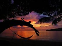 Тропический гамак в рае на заходе солнца стоковые изображения