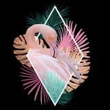 Тропический дизайн фламинго листьев в свете - пинке, золотом, бирюзе на черноте стоковые изображения rf