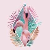 Тропический дизайн фламинго листьев в свете - цветах пинка, золотых и золотых стоковая фотография rf