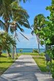 Тропический Дорожка-Abaco Багамские острова Стоковые Изображения