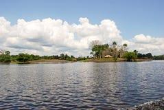 Тропический лес Амазонки: Ландшафт вдоль берега Амазонкы около Манаус, Бразилии Южной Америки Стоковое фото RF