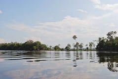 Тропический лес Амазонки: Ландшафт вдоль берега Амазонкы около Манаус, Бразилии Южной Америки Стоковое Фото