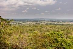 Тропический лес национального парка Khao yai Стоковое Изображение RF