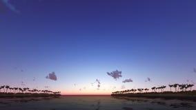 Тропический заход солнца с пальмами 3D представляет Стоковая Фотография RF