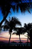 Тропический заход солнца Стоковые Изображения RF