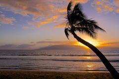 Тропический заход солнца острова Стоковые Фото