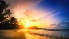 Тропический заход солнца рая стоковая фотография