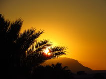 Тропический заход солнца Стоковое Изображение