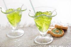 Тропический зеленый коктеиль с лимоном и свежей мятой Стоковое Изображение
