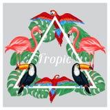 Тропический дизайн печати птиц с листьями ладони Стоковое Изображение RF