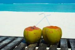 Тропический кокос на белом пляже Стоковая Фотография RF