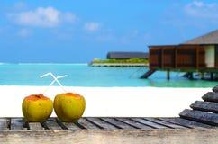 Тропический кокос на белом пляже Стоковое Фото