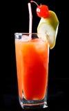Тропический коктеиль апельсина и рома Стоковые Фото