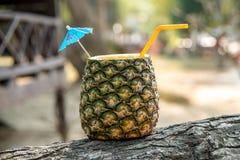 Тропический коктеиль в ананасе Стоковые Фотографии RF