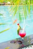 Тропический коктеиль Стоковое Фото