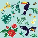 Тропический комплект Стоковые Фото