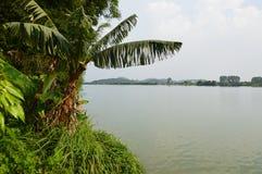 Тропический курорт на острове Hai Zhu Стоковое Изображение RF
