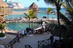 Тропический курорт с бассейном и дельфинами, Майя Косты стоковое изображение rf